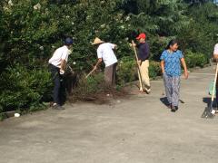 路面、花坛清洁除草活动