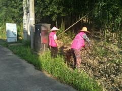 王化村环境卫生整治