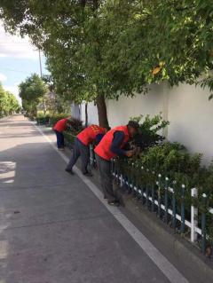 清理路边花坛杂草